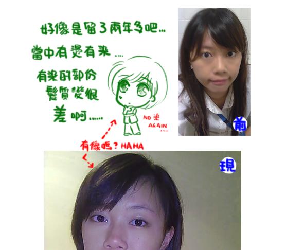 ShortForSusan01.png
