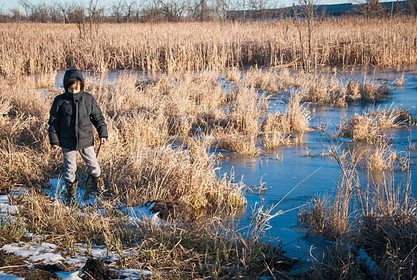wetlands-12.jpg