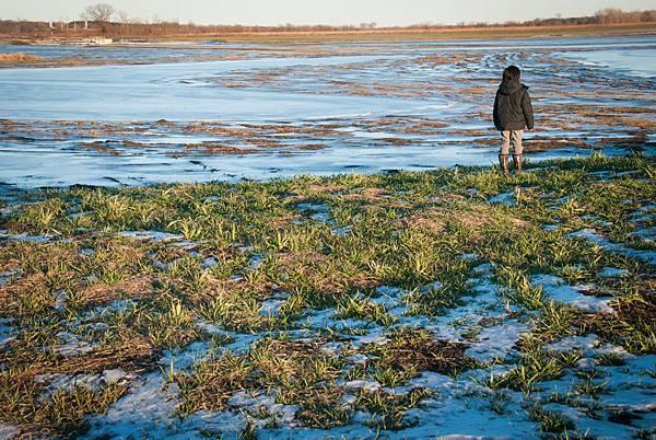 wetlands-13.jpg