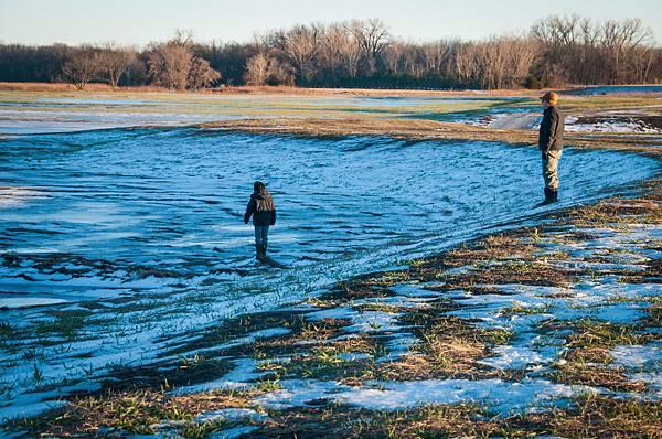 wetlands-14.jpg