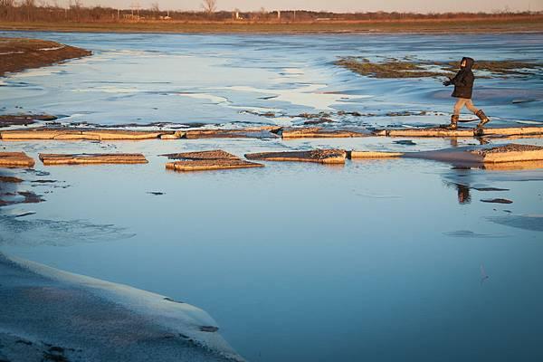 wetlands-23.jpg
