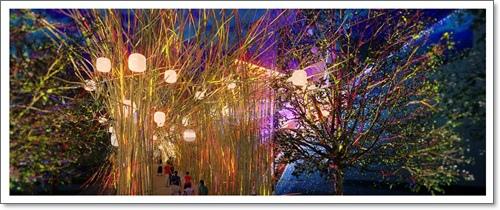 Brisbane Airport Light Garden-1