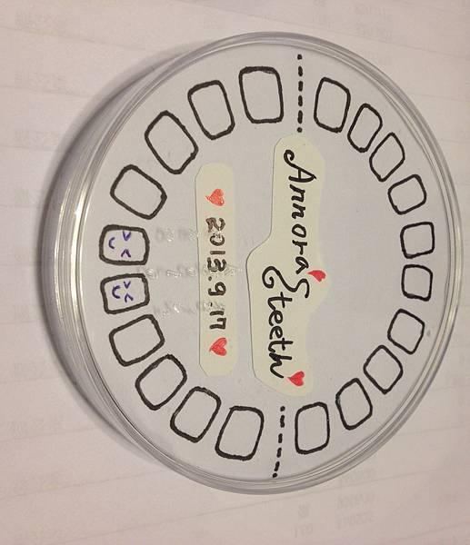乳牙盒-06