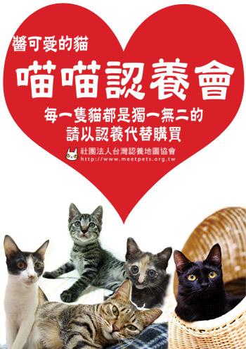adopt-350.jpg