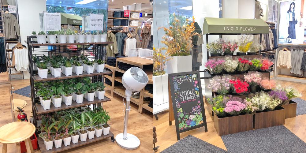 UNIQLO TAIPEI全球旗艦店-UNIQLO FLOWER.jpg