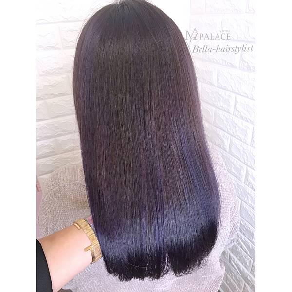 紫_180125_0001.jpg