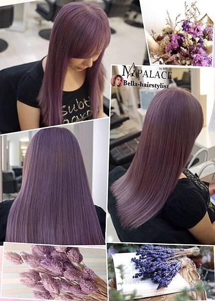 紫_180125_0009.jpg