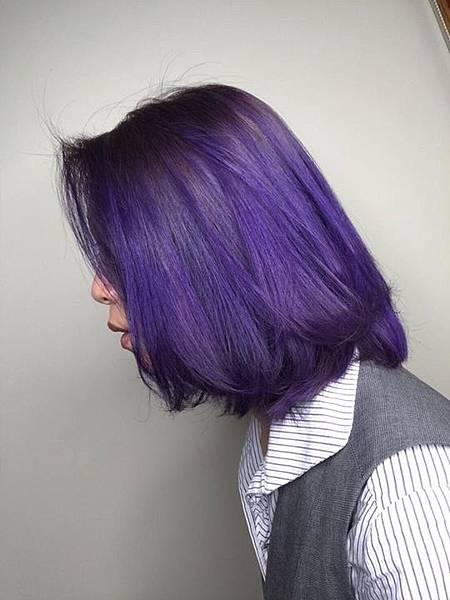 紫_180125_0047.jpg