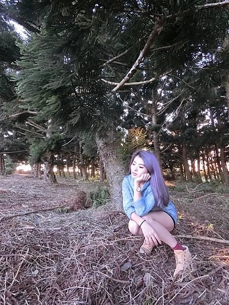 紫_180125_0064.jpg