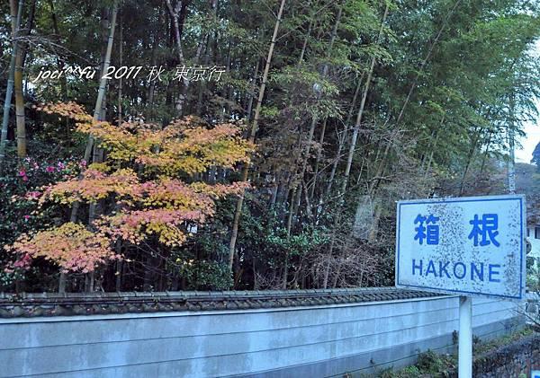 東京行2 486.jpg