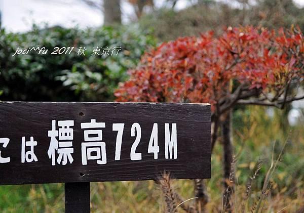 東京行2 495.jpg