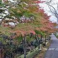 東京行2 765.jpg