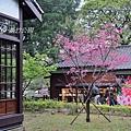 在新竹 (140).jpg