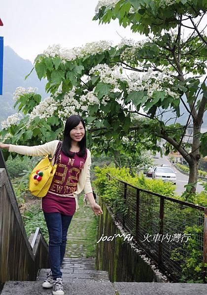 新竹 028.jpg
