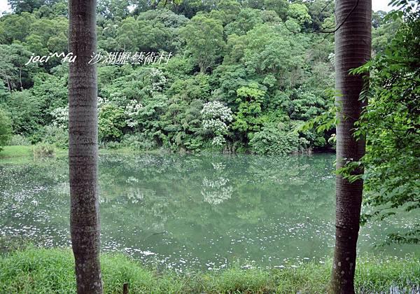 新竹 198.jpg