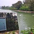 澄清湖 028 - 複製.jpg