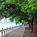 澄清湖 040 - 複製.jpg