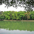 澄清湖 138.jpg