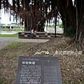 衛武營都會公園 153.jpg