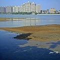 澄清湖 014.JPG