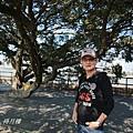 澄清湖 028.JPG