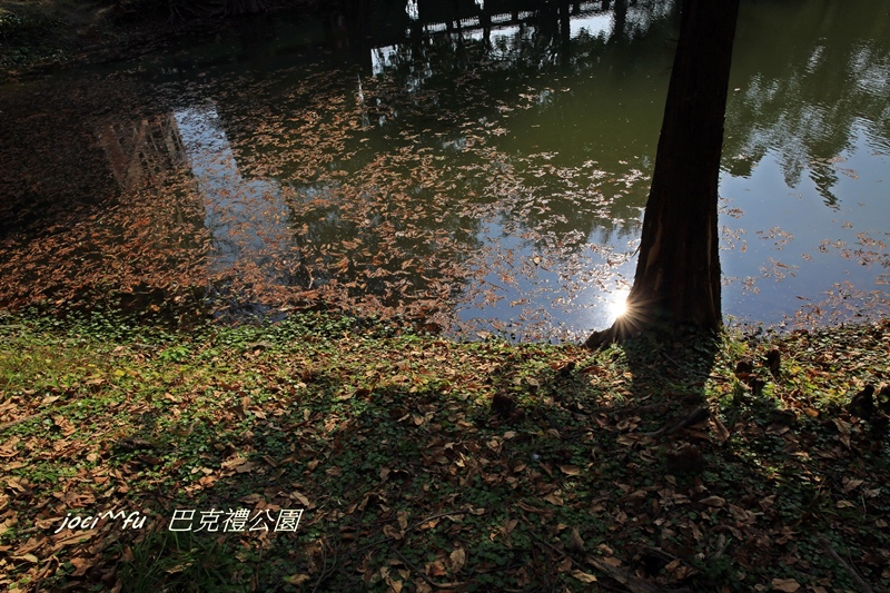 台南 082.JPG