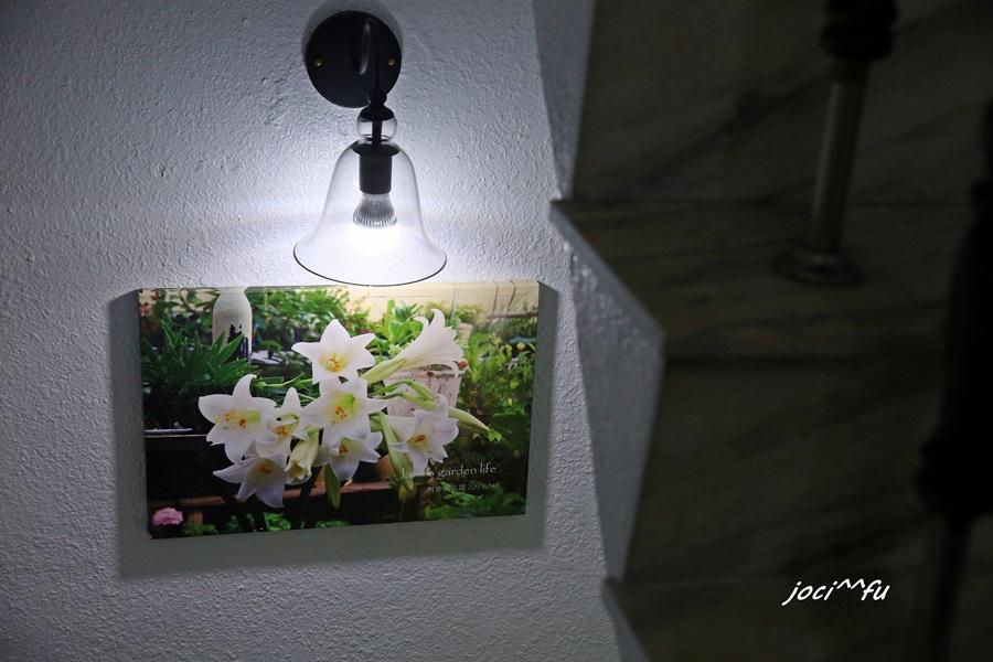 植物染 050.JPG
