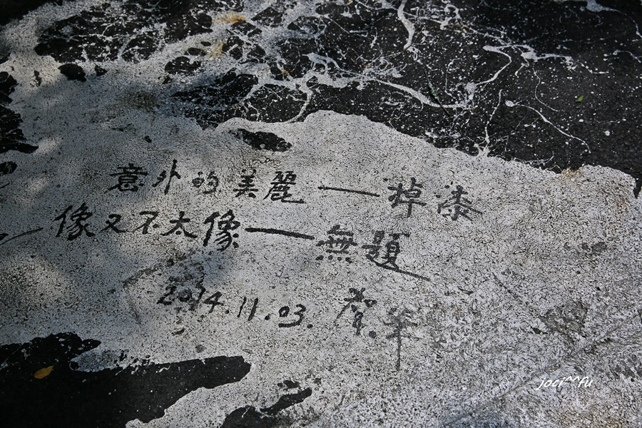 日月潭1 316.JPG