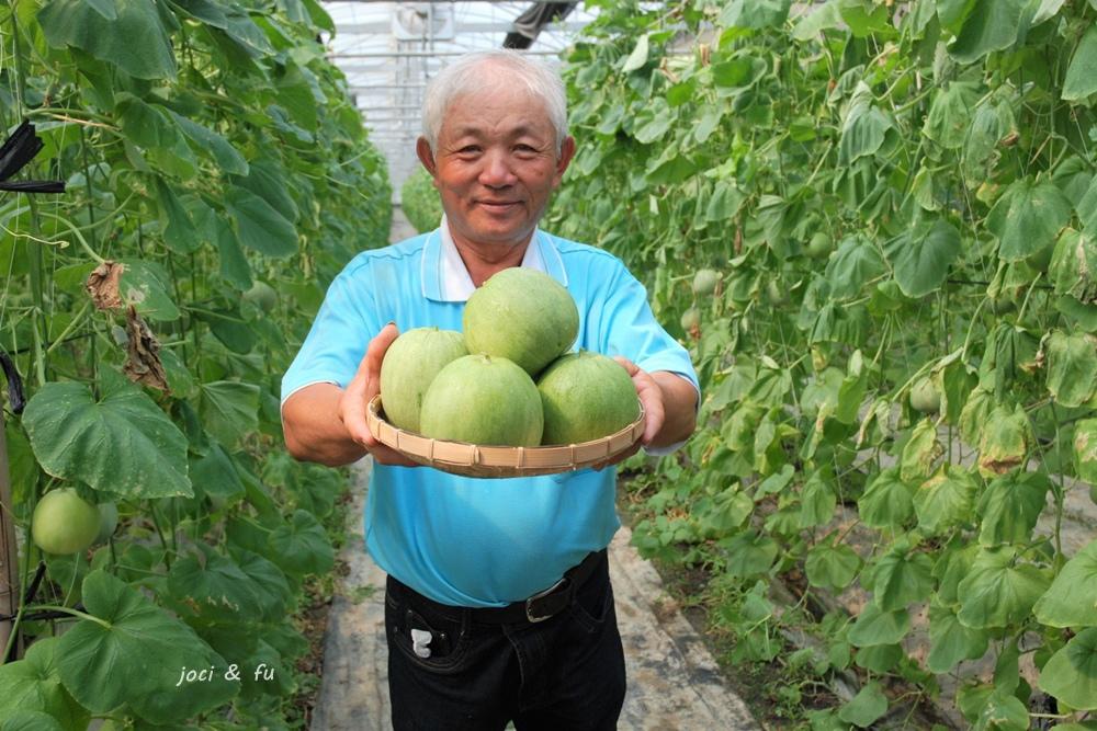 豐碩果園甜瓜2.jpg