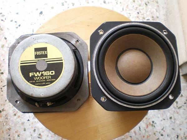 FOSTEX FW160.jpg