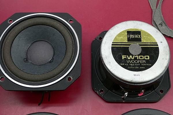 FOSTEX FW100.jpg