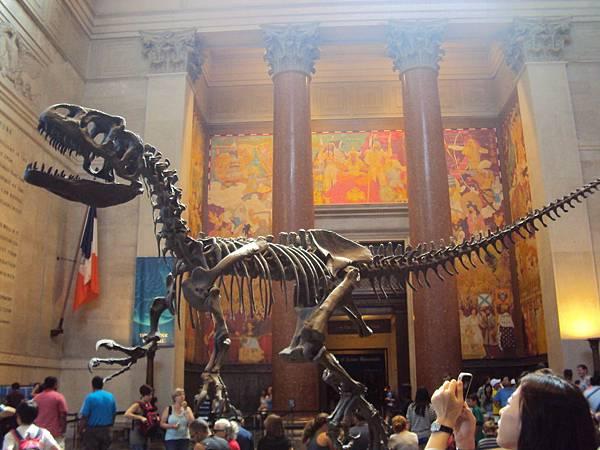 5885自然歷史博物館