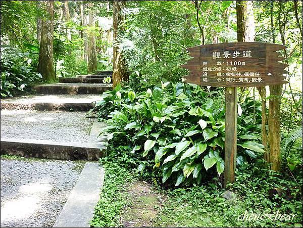 8觀景步道.JPG