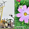 旗津風車公園_4.jpg