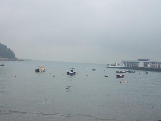 下雨的榕樹灣+1.jpg