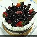咕咕霍夫-藍莓巧克力蛋糕