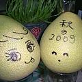 2009-10-03 秋柚.JPG