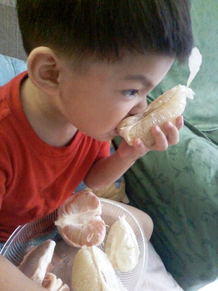 『望語錄』:大白柚真好吃!
