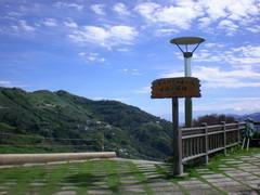 090627 嘉義梅山碧湖茶園