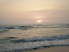 090801 到海邊挖沙