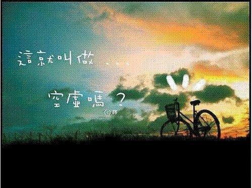 ap_F23_20080804123745391.jpg