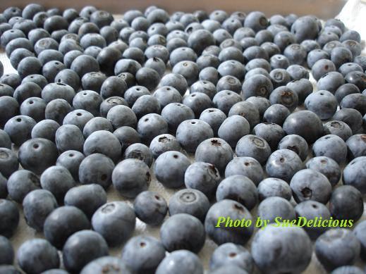 藍莓2.jpg