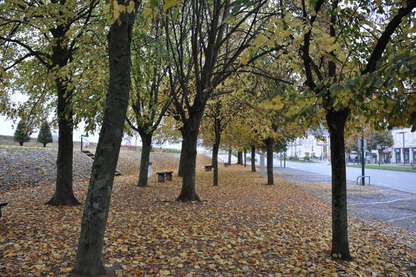 Amboise前的街道
