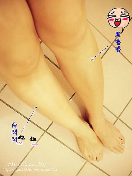 P1130574_副本1.jpg