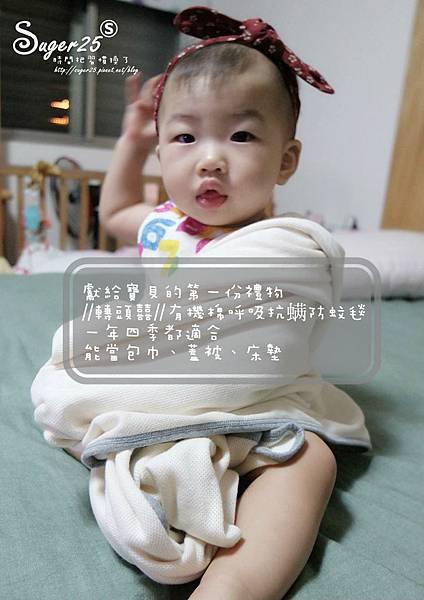 轉頭囍有機棉呼吸抗螨防蚊毯29.jpg