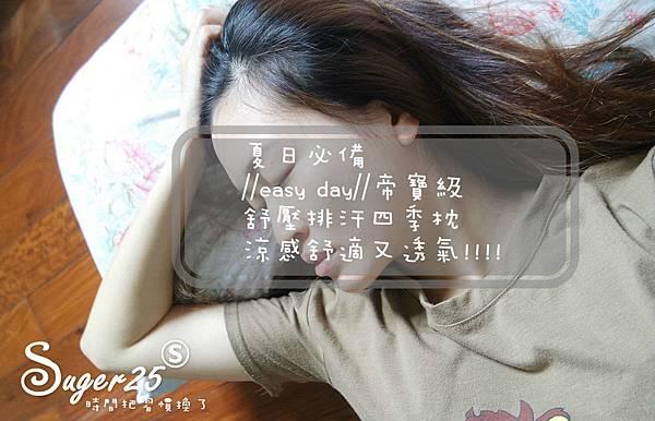 easy day帝寶級舒壓排汗四季枕24.jpg