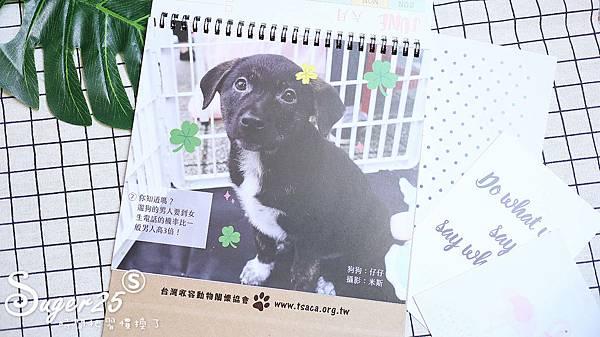 關懷流浪貓狗桌曆5.jpg