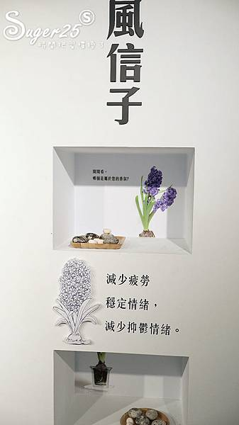 宜蘭白色貨櫃屋Herbelle龍潭湖畔悠活園區35.jpg