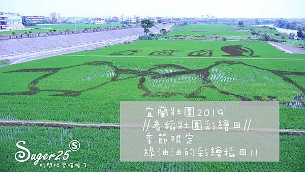 宜蘭壯圍稻田裝置藝術看稻壯圍彩繪田9.jpg