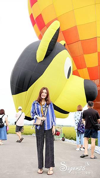 宜蘭三奇伯朗大道熱氣球8.jpg